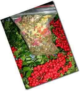 Сбор трав для лечения простатита