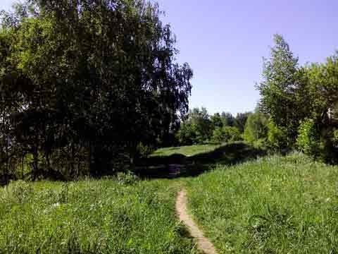 http://lamininomega.ru