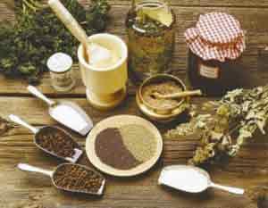 Какие травы для лечения печени